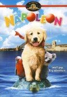 napoleon 8761 poster