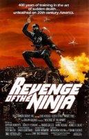 revenge of the ninja 5008 poster