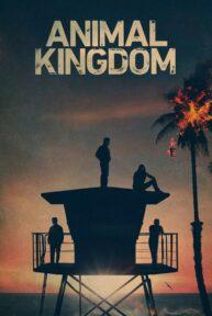 Animal Kingdom Online sa Prevodom