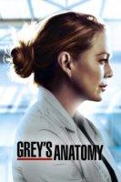 greys anatomy online sa prevodom