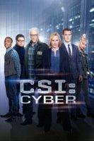 CSI: Cyber Online sa Prevodom