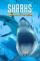 Sharks: Monster of the Media Online sa Prevodom